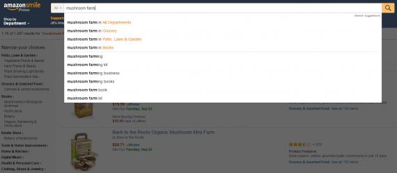 Amazon's Autosuggest Feature