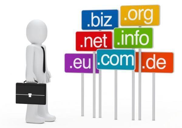 Selecting Domain Name